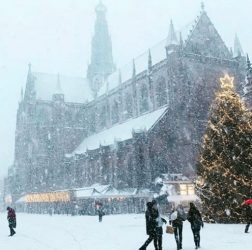 What to do in Haarlem on cold days