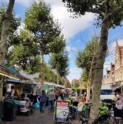 Haarlem's Botermarkt hosts an organic farmers' market on Fridays.