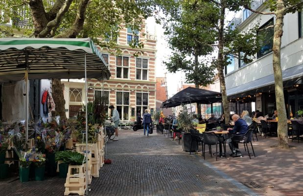 Visit Haarlem and discover why tourists love the cityTourists